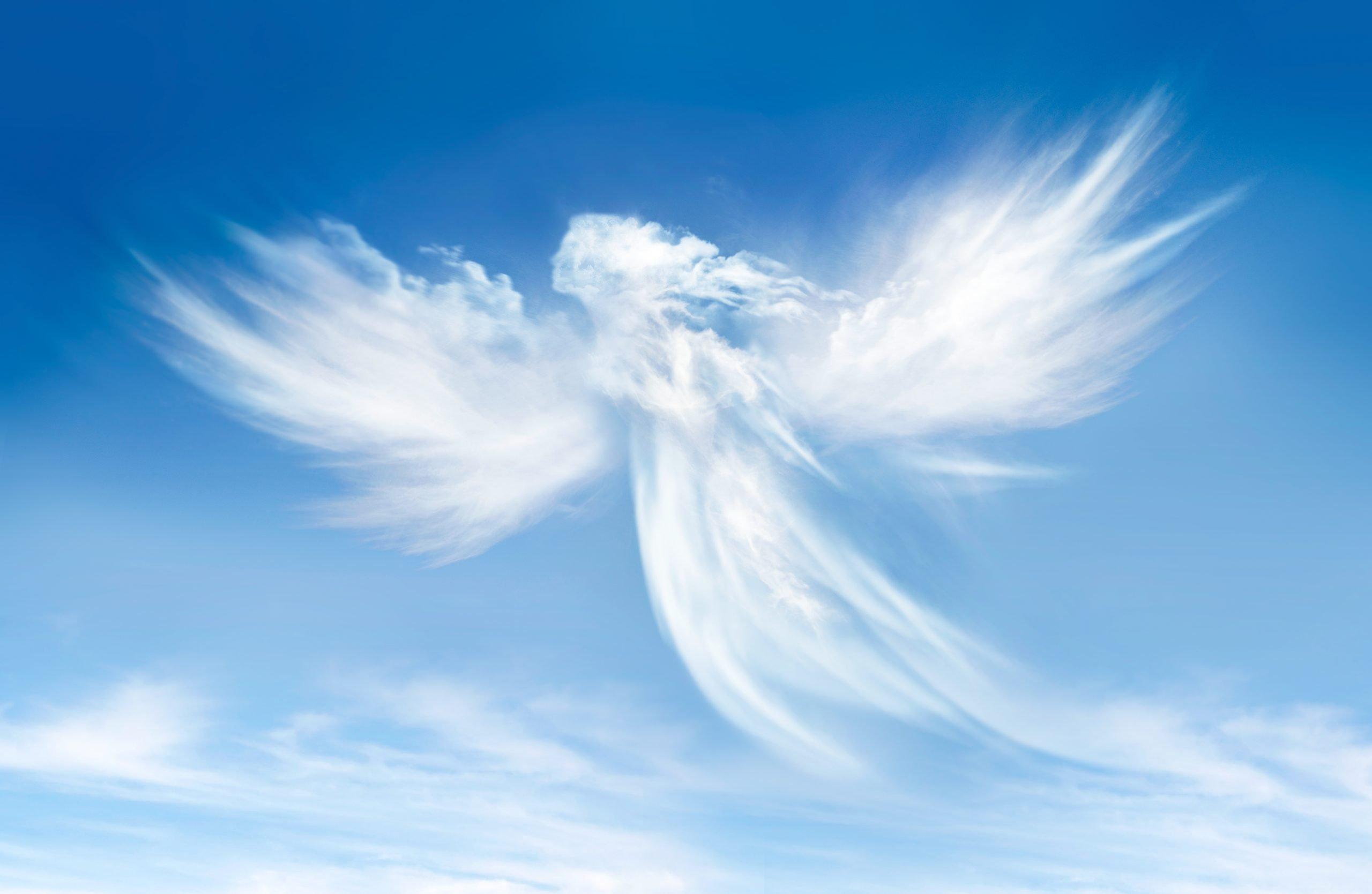 Czyste duchy. Wygląd Aniołów