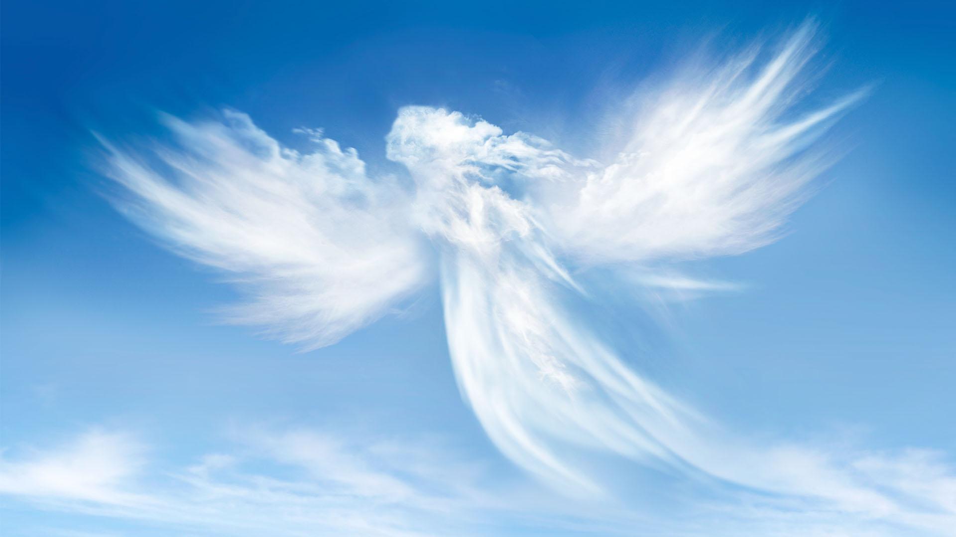 Co robią Aniołowie?